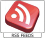 View RSS Feeds details